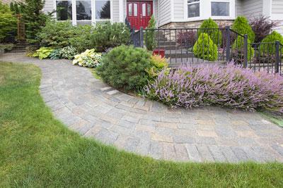 Low Maintenance Front Porch Plants
